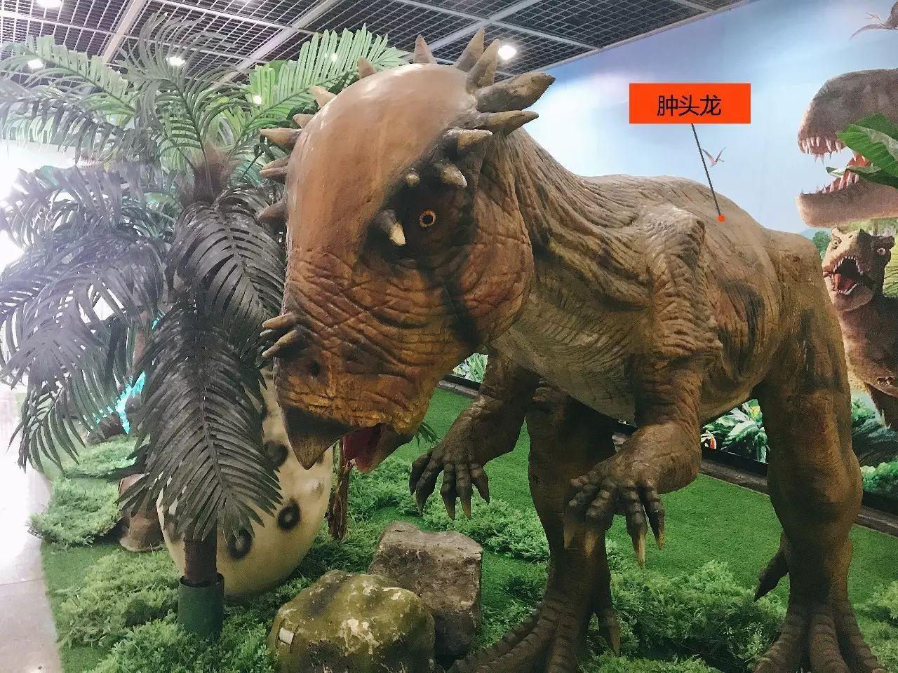 功举办,逼真的恐龙美陈场景吸引了很多乘坐地铁的市民驻足参观与拍照.